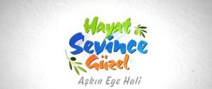 hayat-sevince-guzel-logo-medyanoz