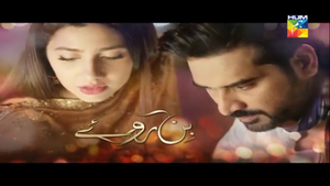 official_title_screen_of_bin_roye