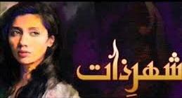 shehr-e-zaat_hum_tv
